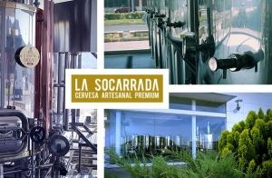 Visita, cata ilimitada y picoteo en La Socarrada